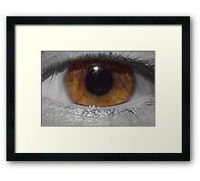 Scrutinous Eye Framed Print