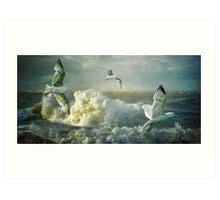 Herring Gulls on The Mersey Art Print