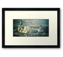 Herring Gulls on The Mersey Framed Print
