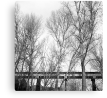 Tracks in the Trees Canvas Print