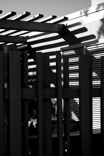 Dark Trellis by Glenn Cecero