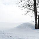 Snowscape by Christina Backus