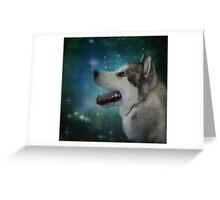 Polar Star Gazer Greeting Card