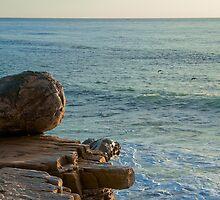 360 View by Jordan Selha