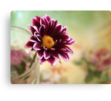 Little Gifts Canvas Print