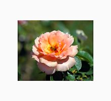 Apricot Hybrid Tea Rose With Honeybee Unisex T-Shirt