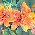 Orange Lilies by arline wagner