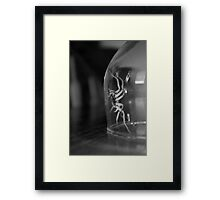 Spiders Are Cool Framed Print