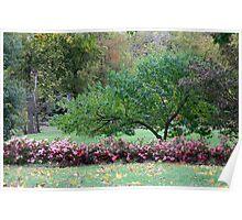 Autumn Park Scenery Poster
