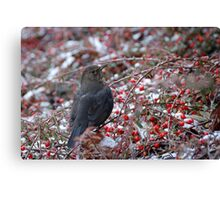 Christmas Lunch Canvas Print