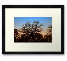 Desolate Sunset Framed Print