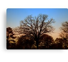 Desolate Sunset Canvas Print