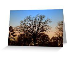 Desolate Sunset Greeting Card