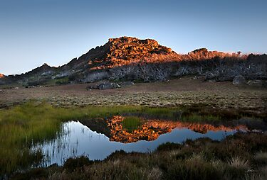 Mt Buffalo Beauty by Mieke Boynton