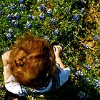 Blue Bonnets by charityhunt