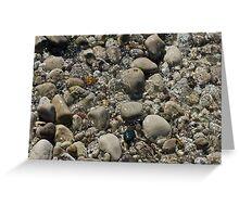 Rocks, Beach, River, Water Greeting Card