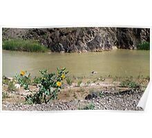 Ghezel Ozan River in May Poster