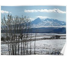 Cold Sunny Winter Day Poster