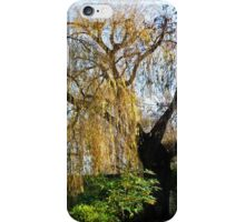 Oxford Willow iPhone Case/Skin