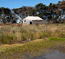 The Forgotten Farmyard by John Sharp