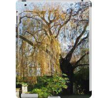 Oxford Willow iPad Case/Skin