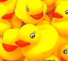 Rubber Duckies by D. D.AMO