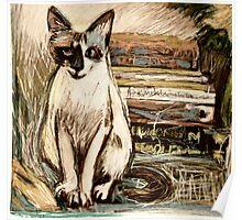 Tara the Cat Poster