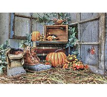 Autumn Roost Photographic Print