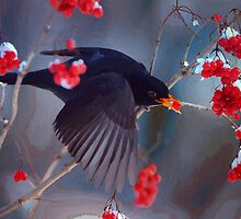 Black Bird in Flight by artstoreroom