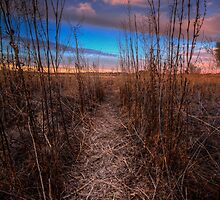 Beaten Path by Bob Larson