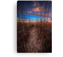Beaten Path Canvas Print