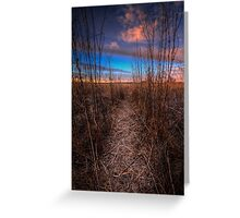 Beaten Path Greeting Card