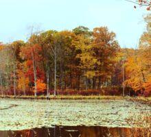 Beaver Pond. Sticker