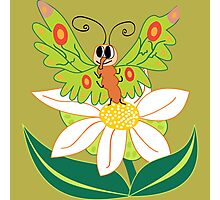 Butterfly on flower cute cartoon Photographic Print