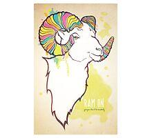 Ram On Photographic Print