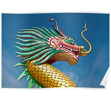 china dragon head Poster