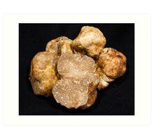 Oregon White Truffles # 2 Art Print