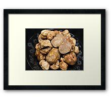Oregon White Truffles Framed Print