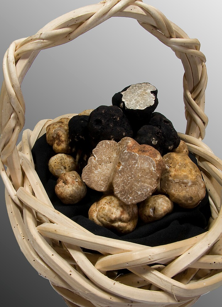 Oregon Truffles in a Basket by OrPhotoJohn