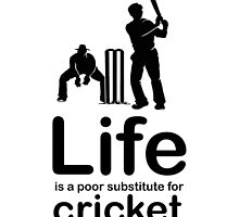 Cricket v Life - White by Ron Marton