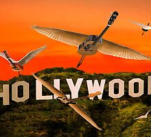 Hollywood Rocks by Eric Kempson