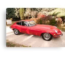Red Car shining on the background of trees  Canvas Print