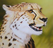 Jabari the Cheetah by Colin Howard