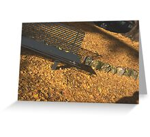It was December, before Christmas, but looks like an early autumn. Greeting Card