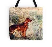 Summer Lee Doggie Tote Bag