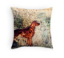 Summer Lee Doggie Throw Pillow