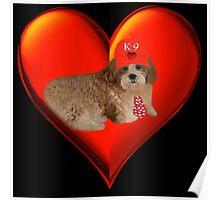 "♪ ♫ ✿♥‿♥✿ K-9 LUV♥~ ""WON'T U LET ME BE YOUR LOVIN TEDDY BEAR ?"" VALENTINE ♪ ♫ ✿♥‿♥✿    Poster"