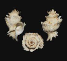 Three shells Kids Tee