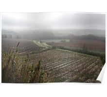 Autumn over the French vineyards Poster