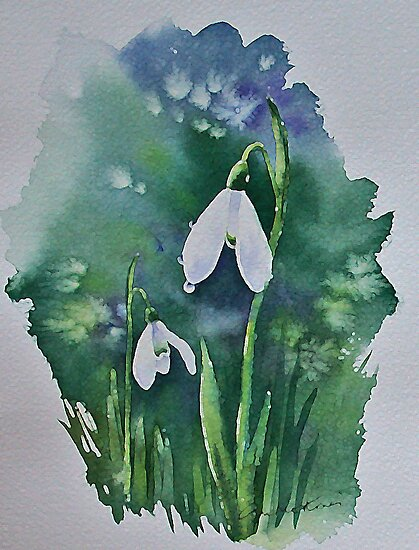 Two Snowdrops after rain by Ann Mortimer